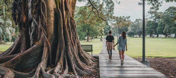 couple walking in park by huge tree